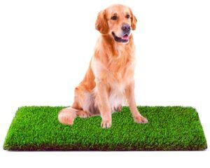 MTBRO Artificial Grass, Professional Dog Grass Mat, Outdoor Potty Training and Replacement Grass Mat