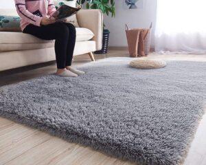 Noahas Luxury Fluffy Rugs Ultra Soft Shag Rug for Bedroom Living Room