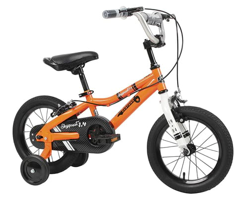 Duzy Customs Skyquest Bike